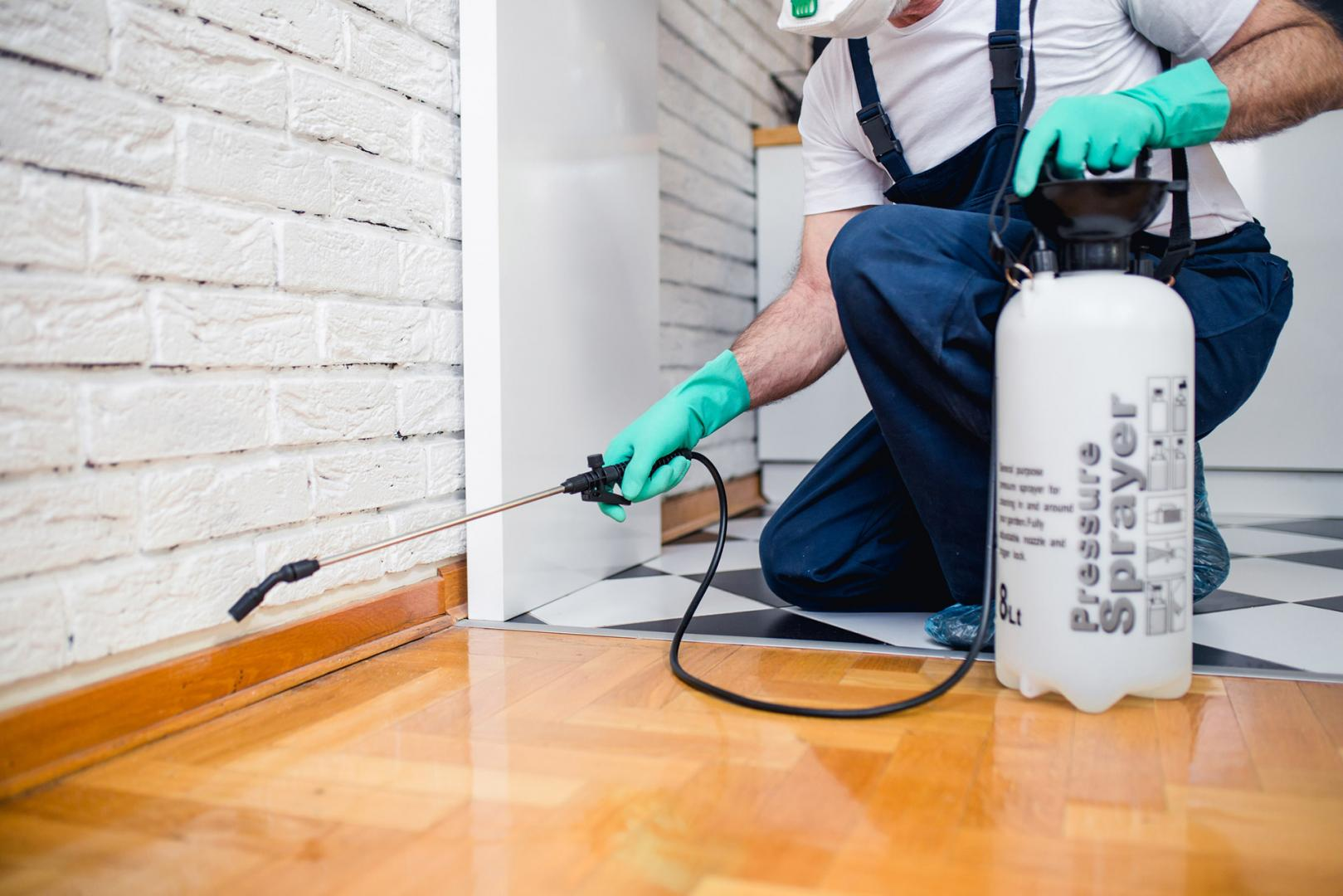 What Is the Importance of Pest Control Frequency?